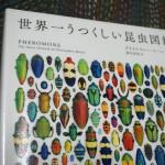 死ぬまでに一度は見たい世界の珍虫が結集『世界一うつくしい昆虫図鑑』クリストファー・マーレー