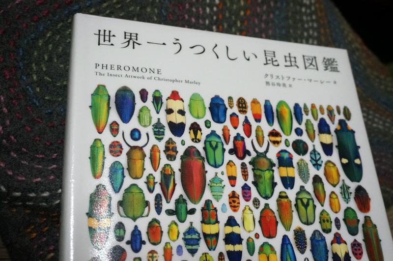 jitozu_konchuu01