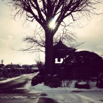 わが家の慣習か、土地柄なのか。元旦の日、朝飯を食べると、ご先祖さまのお墓参りに行きます。#元旦 #正月 #墓参り