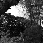 庭の竹から #七夕 用の笹を拝借
